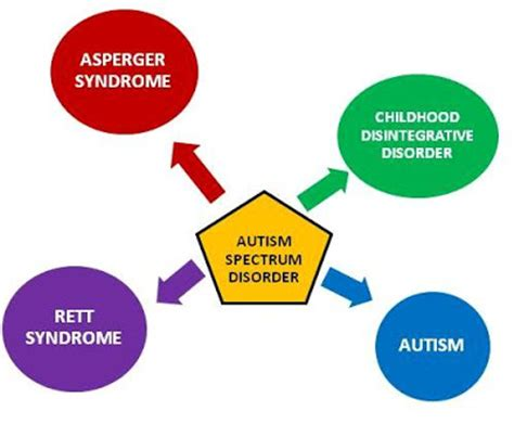 Research paper on cause of autism